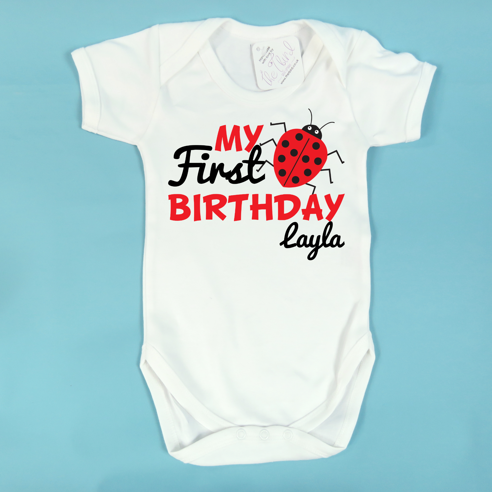 My First Birthday Personalised With Name And Ladybird